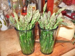 Que faire avec de belles asperges vertes du marché?