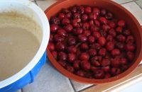 pr�parer les cerises du clafoutis