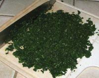 vert de blettes