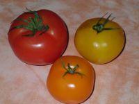 voici nos trois tomates